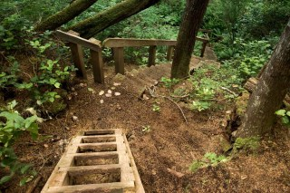 a set of stairs leading down toward Irony Creek on the North Coast Trail