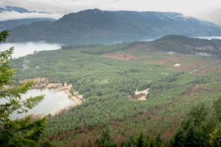 view from logging spur, heading to Mt Buttle