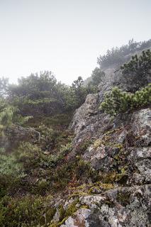 Route description: Mount Kitchener Prince of Whales Range, Vancouver Island