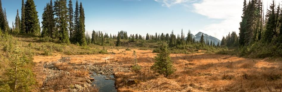 Mount Philips, Arnica Lake, Explorington, Hiking, Climbing, Vancouver Island