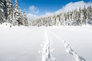 Winter over Battleship Lake , Strathcona Park on Vancouver Island