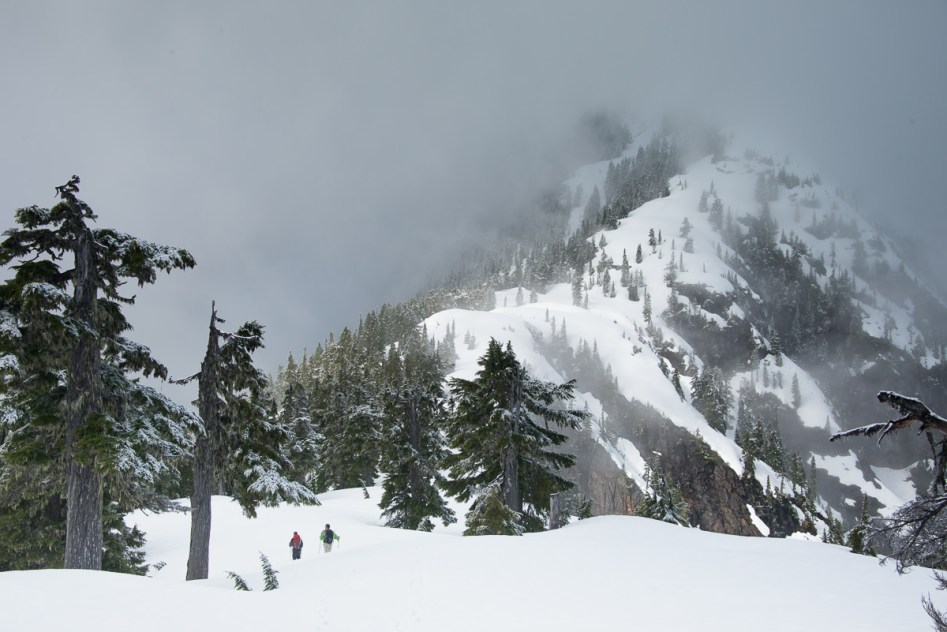 Hiking on Vancouver Island to Mount Kokummi