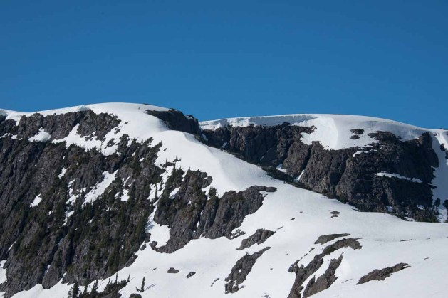 A gorgeous ridge of snow climbing to yet another high point on our way to Rees Ridge