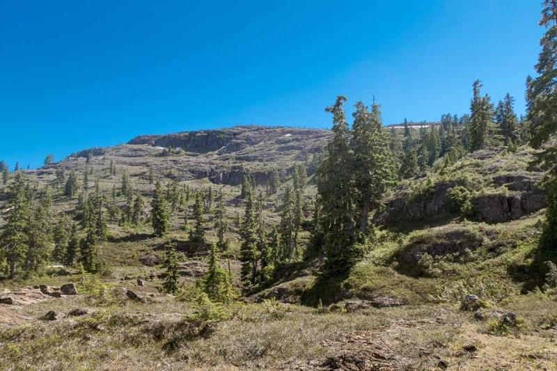 Walking in the saddle between Idsardi Mountain and Crest Mountain. Looking back up Crest Mountain!