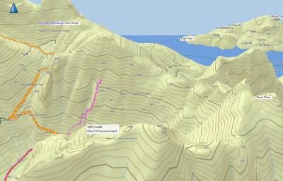 Mount Milner, Snowshoeing, Vancouver Island, snowshoeing vancouvver island, mountaineering, island mountain ramblers, explorington, matthew lettington