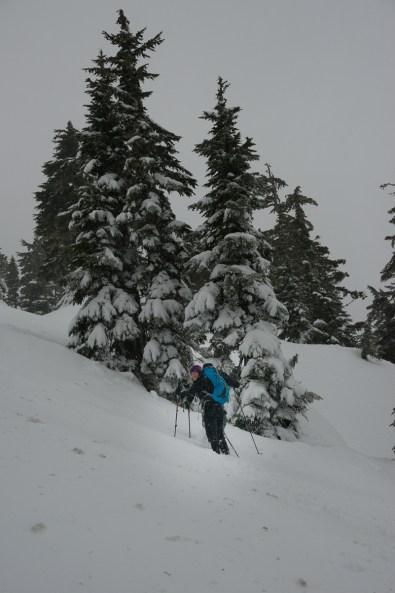 hiking, vancouver island, Mount Grey