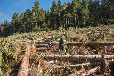 hiking and Mountaineering on Vancouver Island