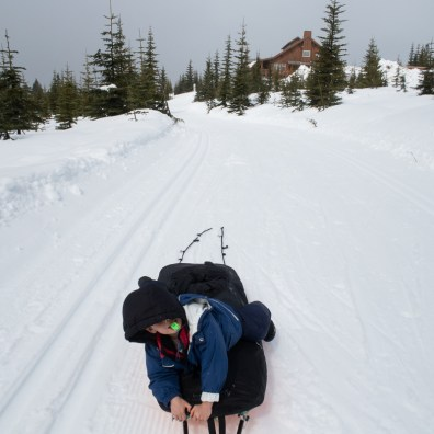 winter camping in Strathcona Park, pulk sled