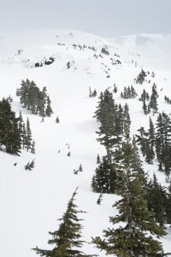 hiking, mountaineering-vancouver island, snowshoe, island mountain ramblers