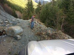 Vancouver Island logging road,