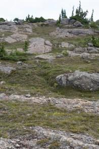 Big Den Mountain, Bc, Canada