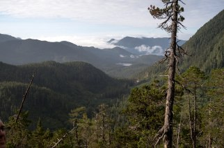 Maintland Range (7)