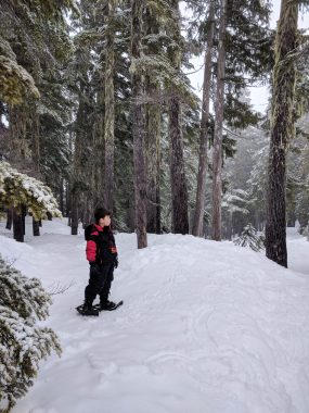 a boy stands a lone wearing snowshoes on a trip to Mount Elma in Strathcona Park
