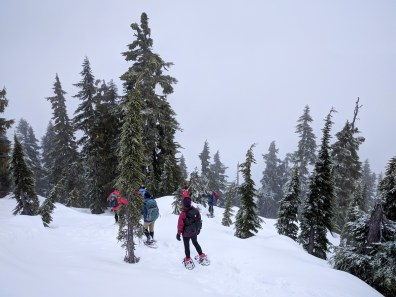 a group of snowshoers on the Summit of Mount Elma in Strathcona Park