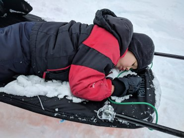 child sleeping on a pulk sled