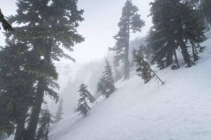 Up through the mists toward Mount Adam.