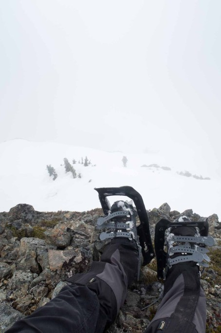 snowshoeing Mount Adam on Vancouver Island