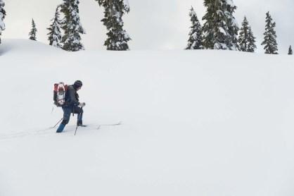 snowshoeing to Strata Mountain in Strathcona Park