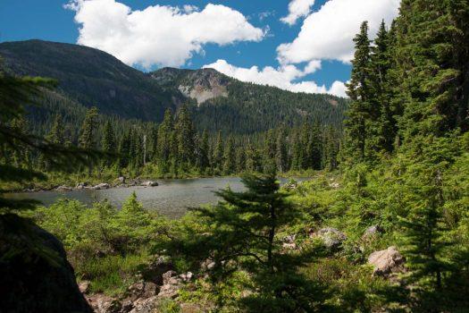 Augerpoint Traverse, Strathcona Park, Mount Washington to HIghway 28 Traverse