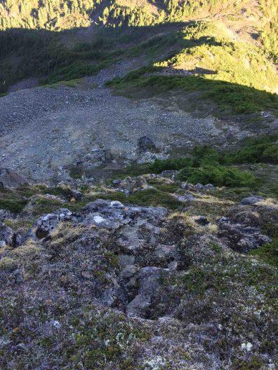 heather-covered ledges leading to the false summit on Tsitika Mountain