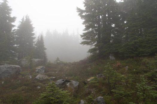 misty mountain hop on Gemini Mountain