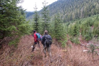 hiking to Big Tree Mountain in the Prince of Wales Range