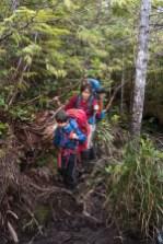 Keeha Bay Trail