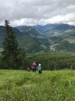 Green Mountain via Sno Bird Trail-5220