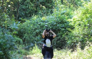 I'm doing what I love. Birding!