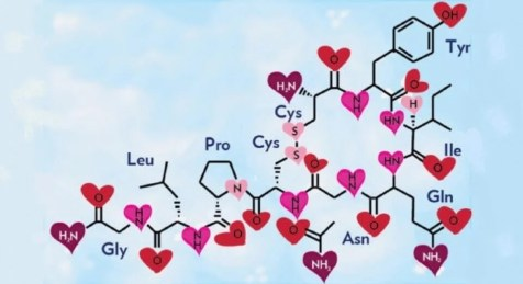 Image result for hormone love