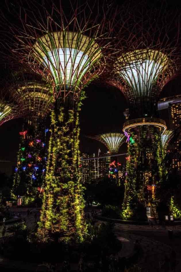 GardensbytheBaySingapore16
