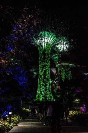 GardensbytheBaySingapore2 - Gardens by the Bay in Singapore: één van de mooiste plekjes in de stad