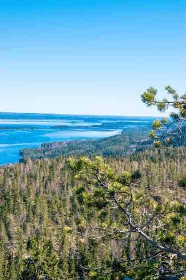 KoliNationalPark19 - Koli National Park in Finland: een Scandinavisch sprookje (dagboekje)