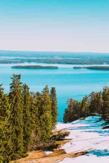 KoliNationalPark3 - Koli National Park in Finland: een Scandinavisch sprookje (dagboekje)