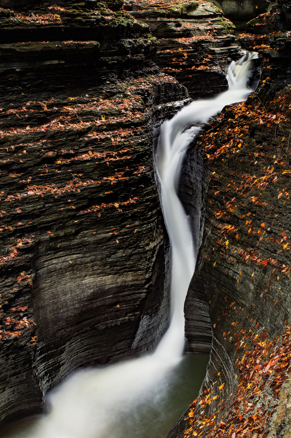 Watkins Glen Snake Falls