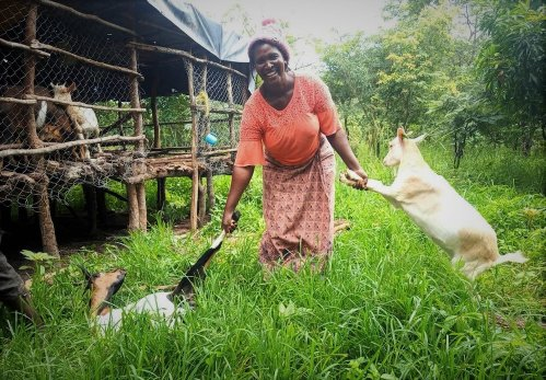 Sylvia tends to her goats. Photo: UNDP/Belinda Zimba