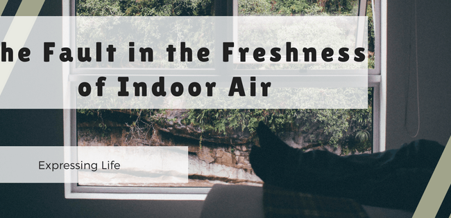 fault-freshness-indoor-air-pollution