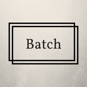 die Stapelverarbeitung - batch processing