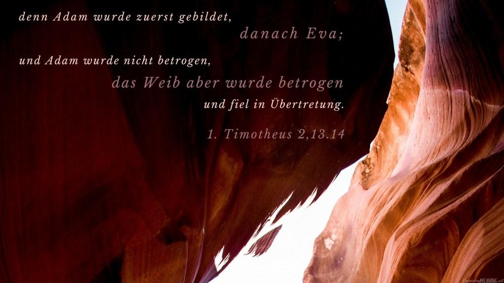 1 Timothy 2:13-14