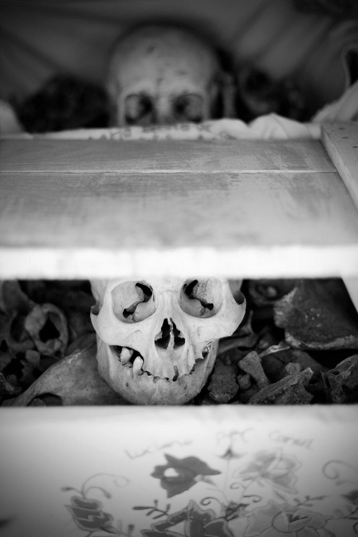 dia-de-los-muertos-expressions-photography-032