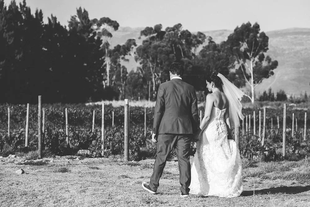 Manley Wine Lodge Wedding Expressions Photography 116