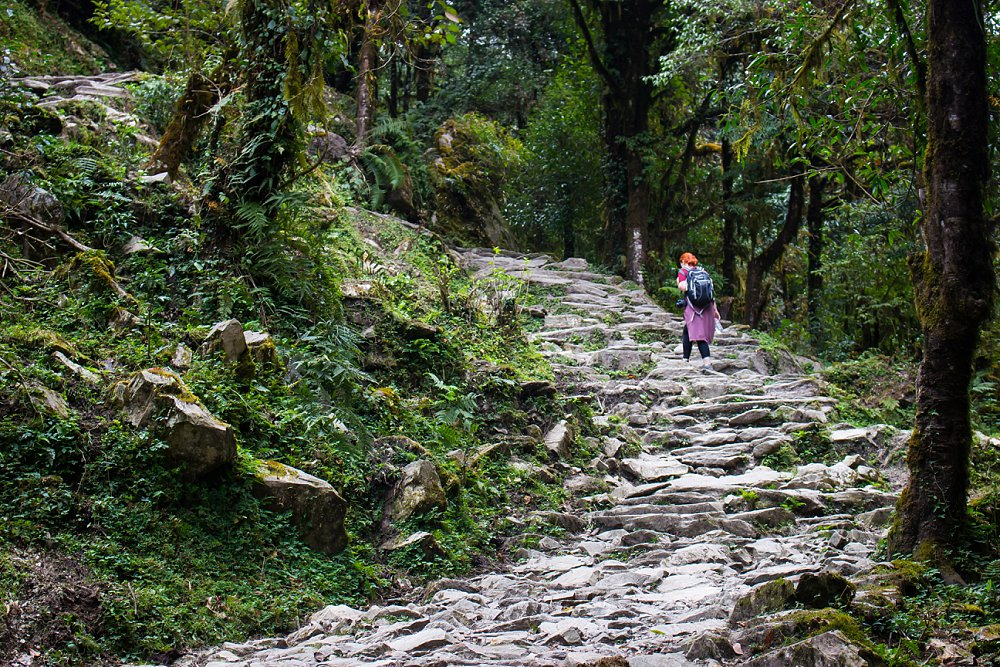 Annapurna Trekking Adventures Expressions Photography 047