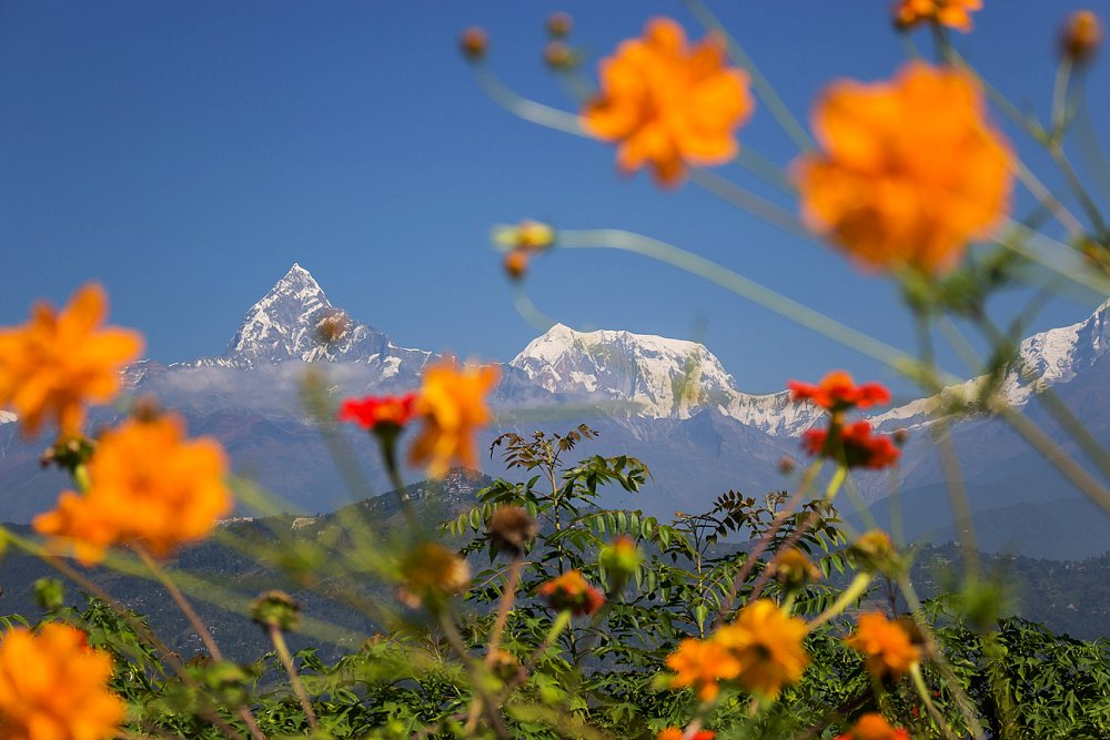 Annapurna Trekking Adventures Expressions Photography 145