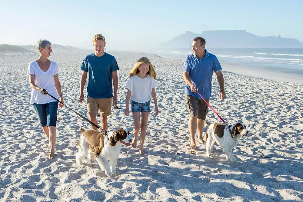 Cape Town Family Beach Shoot Expressions Photography 001