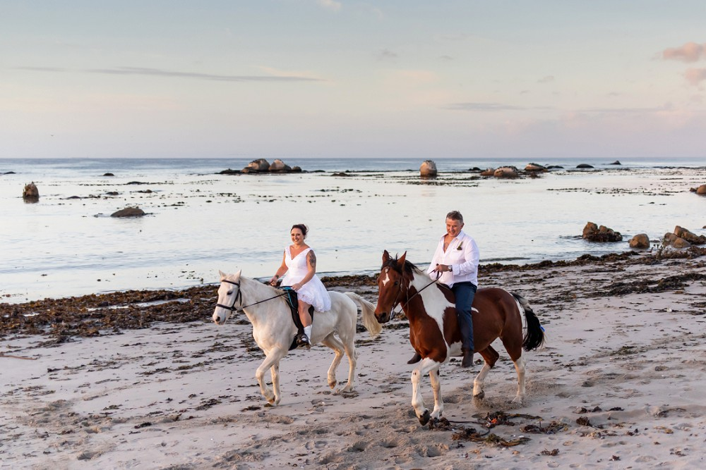 Intimate west coast wedding bride and groom on horses