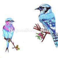 Beautiful blue birds :) (color sketch)