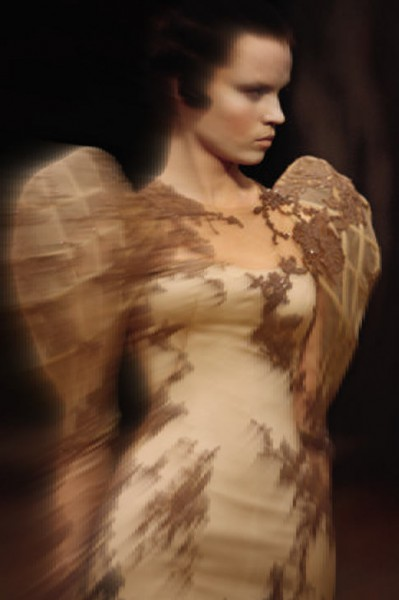 Alexander McQueen SS07 Lace and Embroidered High Shoulder Gown on Exshoesme.com