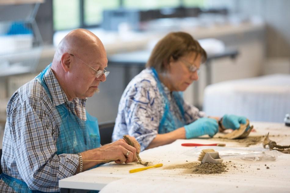 De vrijwilligers maken met grote precisie het botmateriaal proper © Geert Vyverman