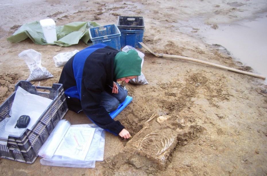 Opgraving van een skelet © Onroerend Erfgoed