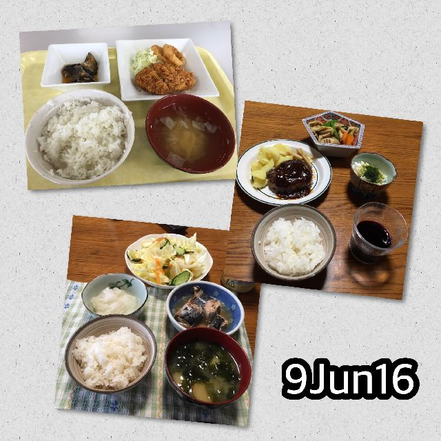 IMG_8597.JPG